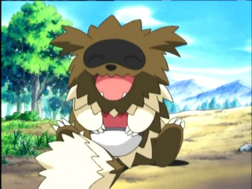 Zigzagoon in the Pokemon Anime