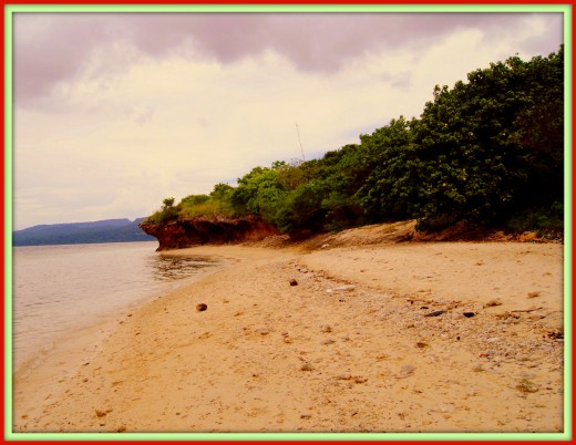 Beach on Menjangan Island.