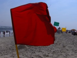 Red, yellow, green flags all signal our relationship's health.