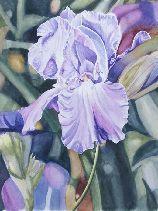 Purple Iris, watercolor 14 x 11""