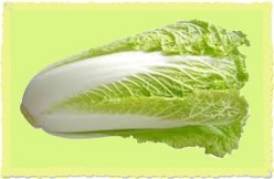 What is Napa Cabbage? Napa Cabbage Recipe Included
