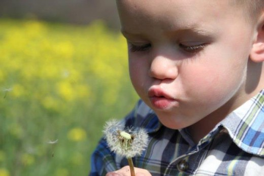 Grandson Maddox 3 years of age