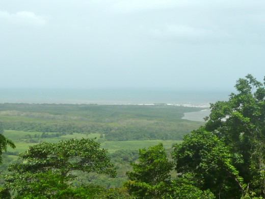 Looking towards the mouth of the Daintree River