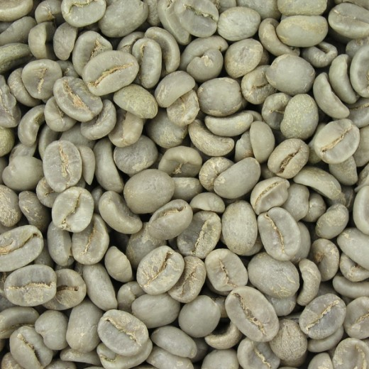 Green (unroasted) coffee beans, the source of the extract used in University of Scranton study