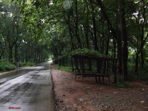 Route towards Nilambur