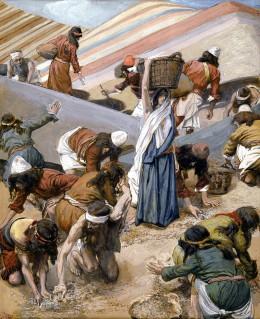 Gathering manna on the desert
