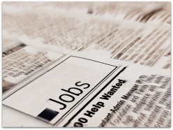 Sociology Jobs Rock: Five Cool Sociology Careers