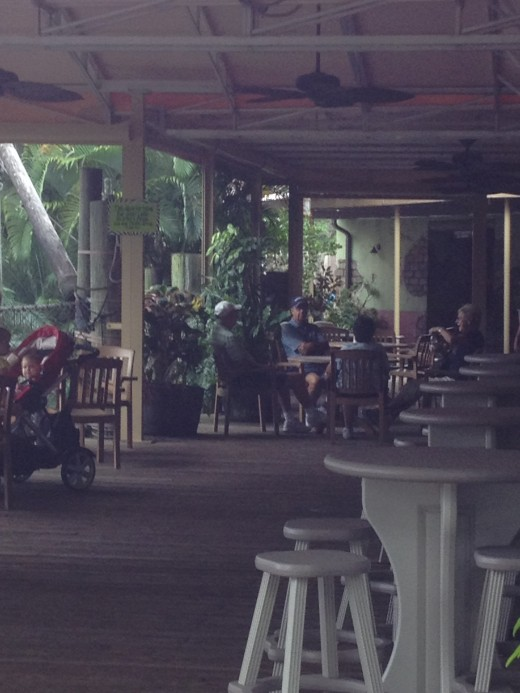 The Tropics Cafe has an outdoor seating area overlooking a placid lake.