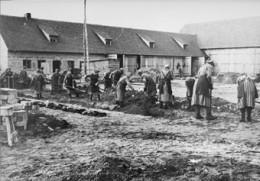 Female Inmate Work Team At Ravensbruck