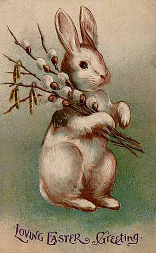 Bunny with what looks like a bouquet of pussy willows.
