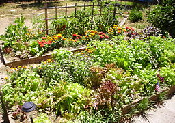 How hard could a garden like this be?