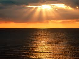 Free horizon