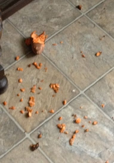 pic of remaining bits of sweet potato