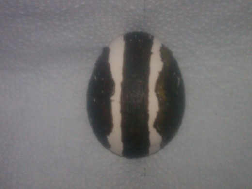 Side view of bleached egg with wax on
