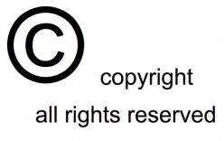 Copyright issue! What to do now ?