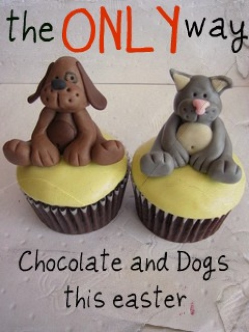 Why Chocolate Is Poisonous For Dogs