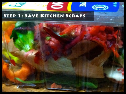 Step 1: Save Kitchen Scraps