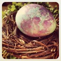 Dyeing Easter Dinosaur Eggs without a Kit-- a