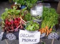 Going Organic: Benefits And Facts About Organic Foods