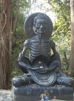 Thailand travel - Chiang Mai attractions - U Mong Buddhist Temple and the fasting Buddha