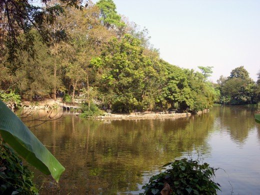 The lake in the grounds of U Mong Temple, Chiang Mai, Thailand