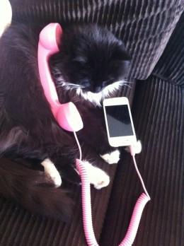 Lola on the Phone