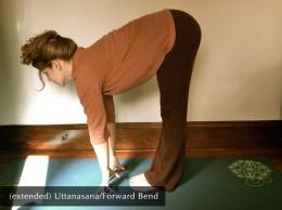 Extended Uttanasana/Forward Bend
