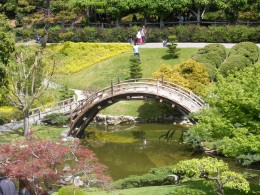 Japanese garden at the Huntington Library.
