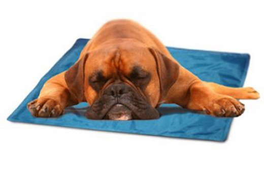 Cooling Pet Cushion Pad automatically re-charges itself  weight activated