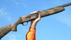 What firearm would you like to own?