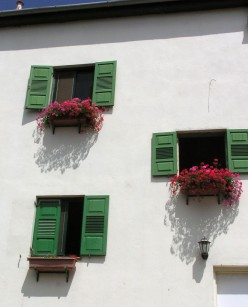 Window boxes are easy on the back and knees.