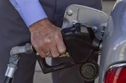 Gas prices going up too fast affecting food prices.