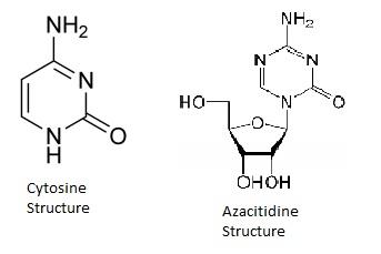 Cytosine Structure in comparison to Azacitidine Structure