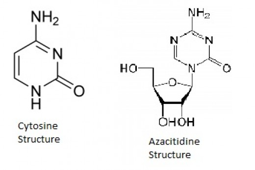 Cytosine Structure in comparison to Azacitidine Structure