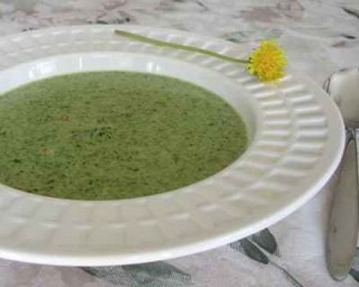 Cream of dandelion and broccoli soup (garnish with edible dandelion flower)