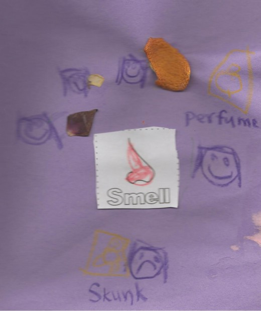 "The ""Smell"" page from my daughter's Senses Smash Journal - she used rose petals, orange peels and drew pictures of a skunk and a perfume bottle"