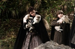 The Game of  Thrones Stark Direwolf, Fact or Fiction?