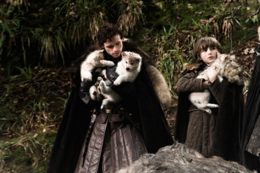 Robb and Bran Stark adopt dire wolf puppies