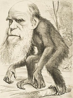 Why was Darwin opposed on including humans in the Origin Of Species?