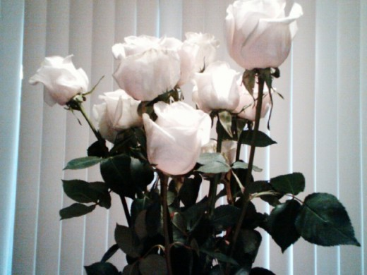 Buy yourself roses once in a while when you are able to save a bit more! You deserve the sweet extras in life!  =)