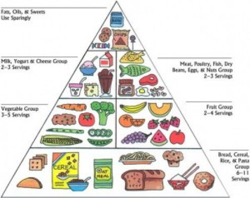 Introduce t your family esp little one to FOOD PYRAMID.