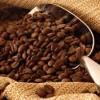 How Coffee Began - a History of Coffee and its Development