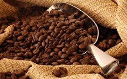 Delicious dark coffee beans make aromatic, full bodied coffee that the world has become dependent on to function in our everyday life!  Drinking coffee with friends is a social activity in many parts of the world.