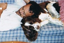 Our Beloved Dogs Alex, Jessy And Doc. Our English Springer Spaniels.
