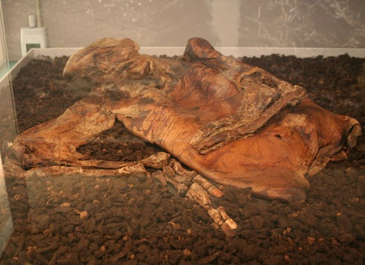 Lindow Man is believed to have been murdered. He was hit very hard on the top of his head, had a broken rib, and had a cord tied around his neck, which caused his neck to break.
