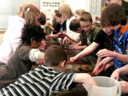 Nothing will engage students more than a chance to get their hands dirty. Field Trips to science centres are a great way to raise the profile of science among young people