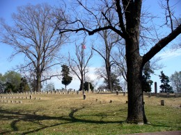 Photo 10 - More tombstones at Shiloh National Cemetery.