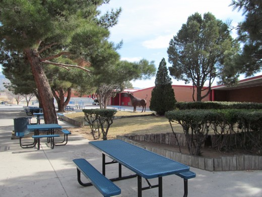 The Sandia High school courtyard, where Terry went to school