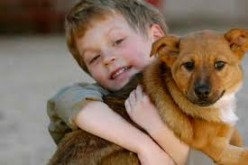 Why Do We Love Pets? Is It in Our Genes to Have Compassion for Animals?