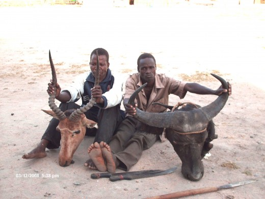 poachers caught with a Hirola head and a Buffola head
